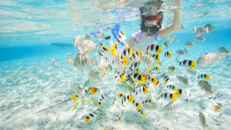4 Best Snorkeling Locations In Kauai